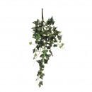 Ivy hanger